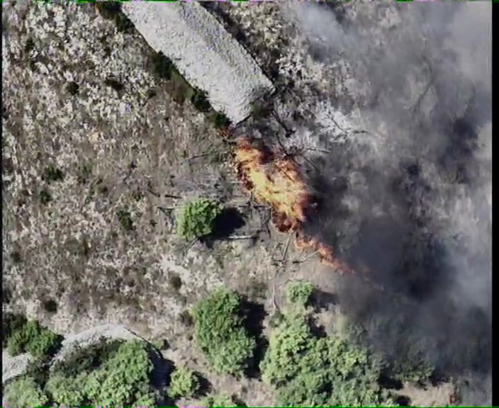 Canadairi gase požar kod Vodica